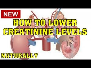 Lower Creatinine Levels