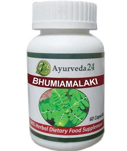 BHUMI-AMALAKI